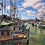 Fishing Fleet, Fishermen's Wharf